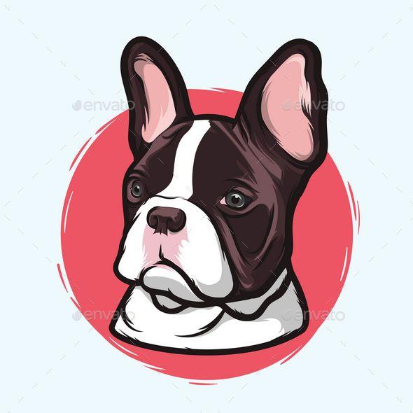 590x590 French Bulldog French Bulldogs, French Bulldog Breed And Bulldog