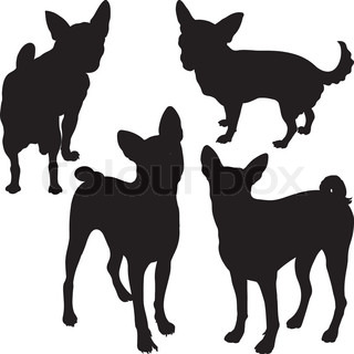 320x320 Set Of Silhouettes Of Dogs Schnauzer, Terrier, Scottish Terrier