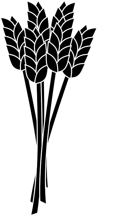 381x720 Grain Clipart Silhouette