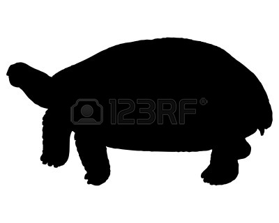400x320 Land Turtle Silhouette Images Free Download