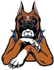 180x235 Boxer Dog Head Premium Clipart