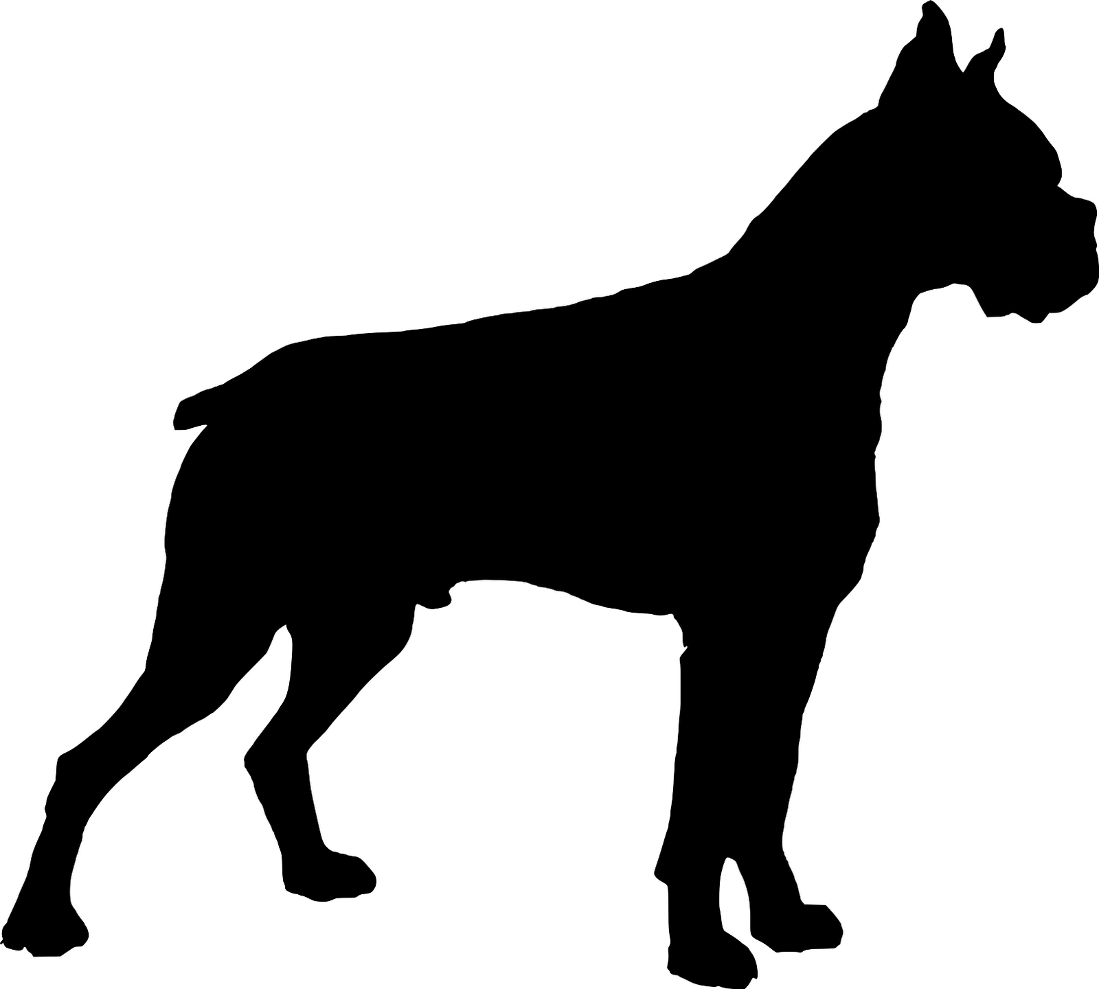 1600x1440 Boxer Dog Silhouette With Dawggie Stuff Dog