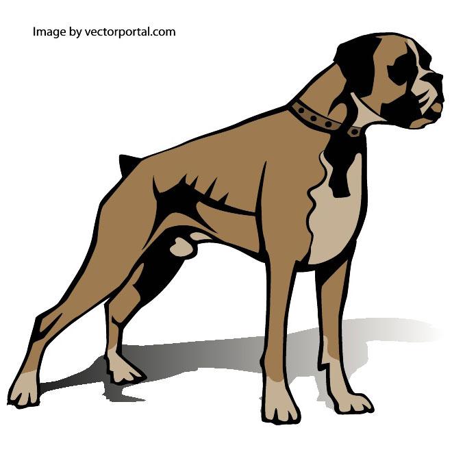 660x660 Boxer Dog Free Vector