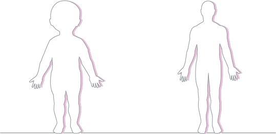 539x263 Body Sketch Outline