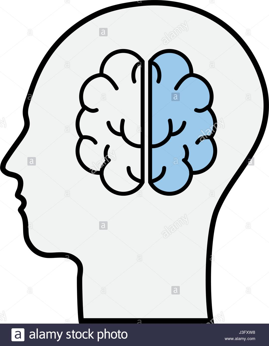 1080x1390 Line Silhouette Head With Brain Inside Stock Vector Art