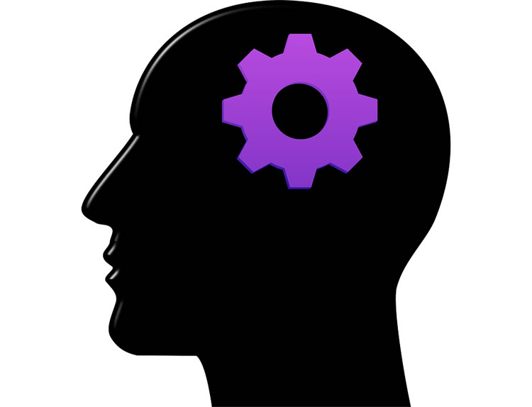 750x574 Brain Training Has No Effect On Cognitive Function Or Decision