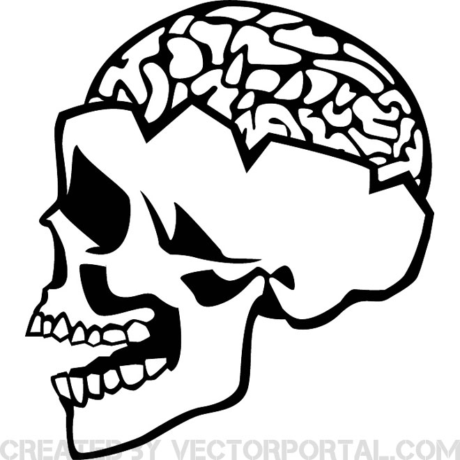 660x660 Skull And Brain Vector