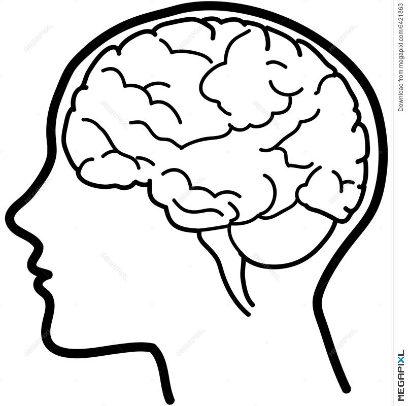 804x800 Vector Brain Icon Bw Illustration 6421863