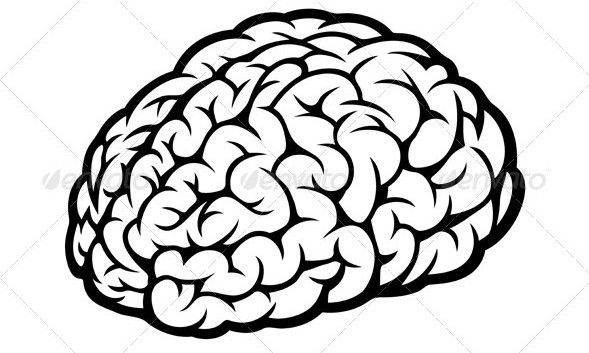 589x353 Freevectordesign Brain Imagine Vector Tuts