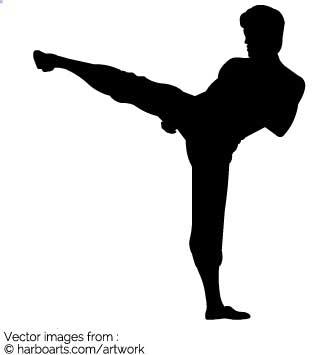 335x355 Download Bruce Lee High Kick