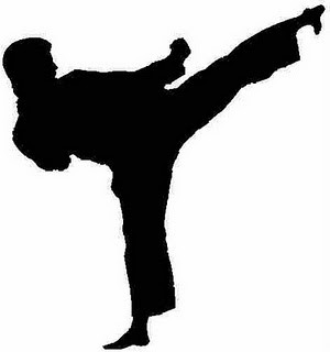 300x320 New Martial Arts Academy Channels Bruce Lee's Unique Style