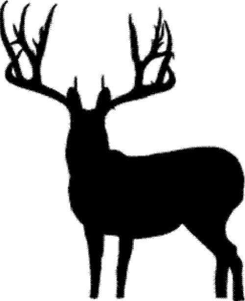 500x614 Big Buck! Deer Decal Deer Sticker Deer Hunting Waterfowl Decal
