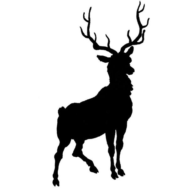Buck Head Silhouette