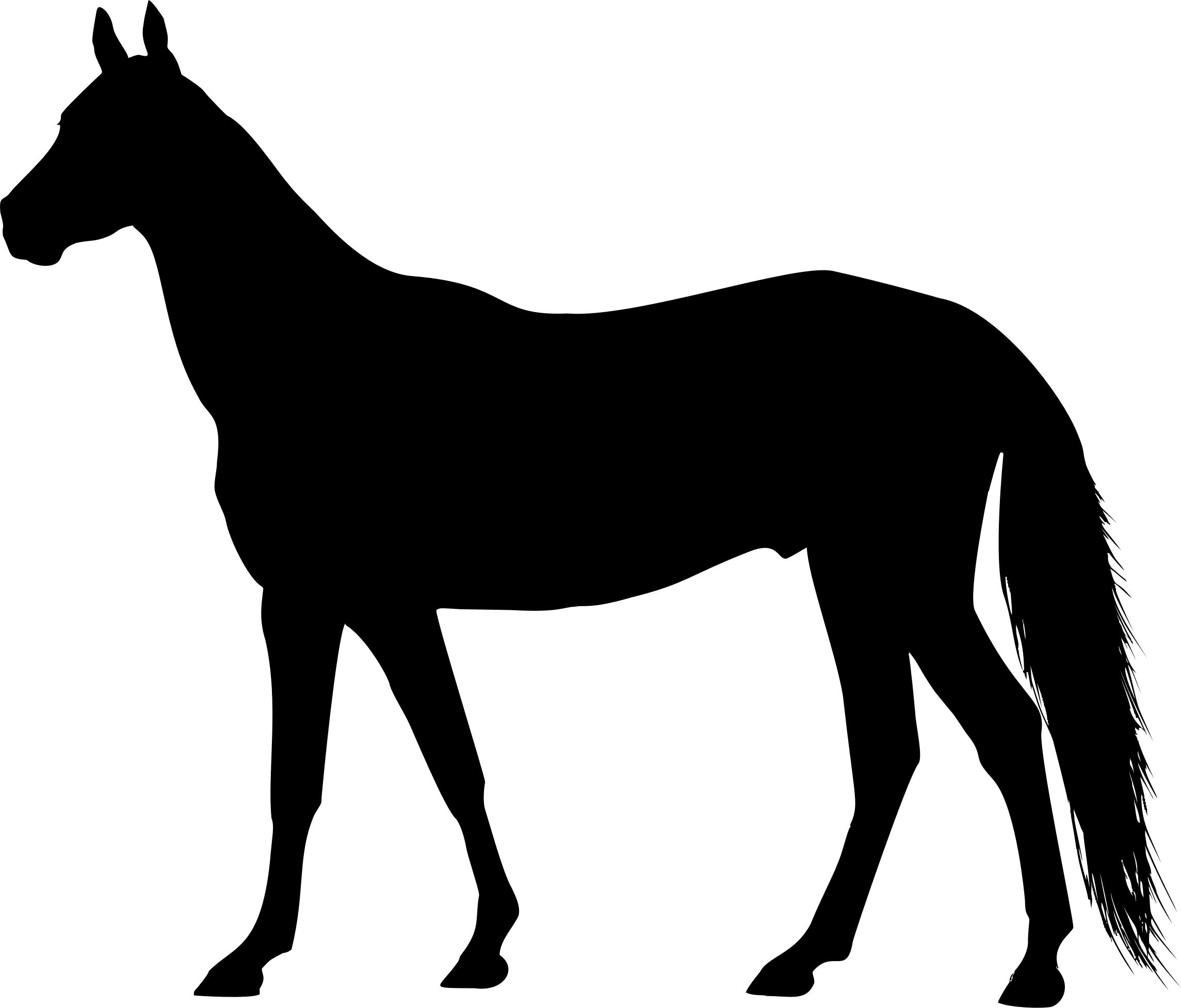 2289x1954 Free Horse Icons Png, Horse Images
