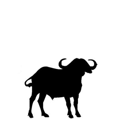 380x380 African Buffalo Clipart Silhouette