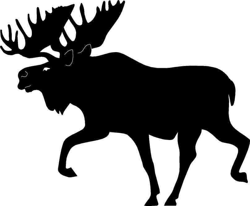 808x668 Moose Silhouette