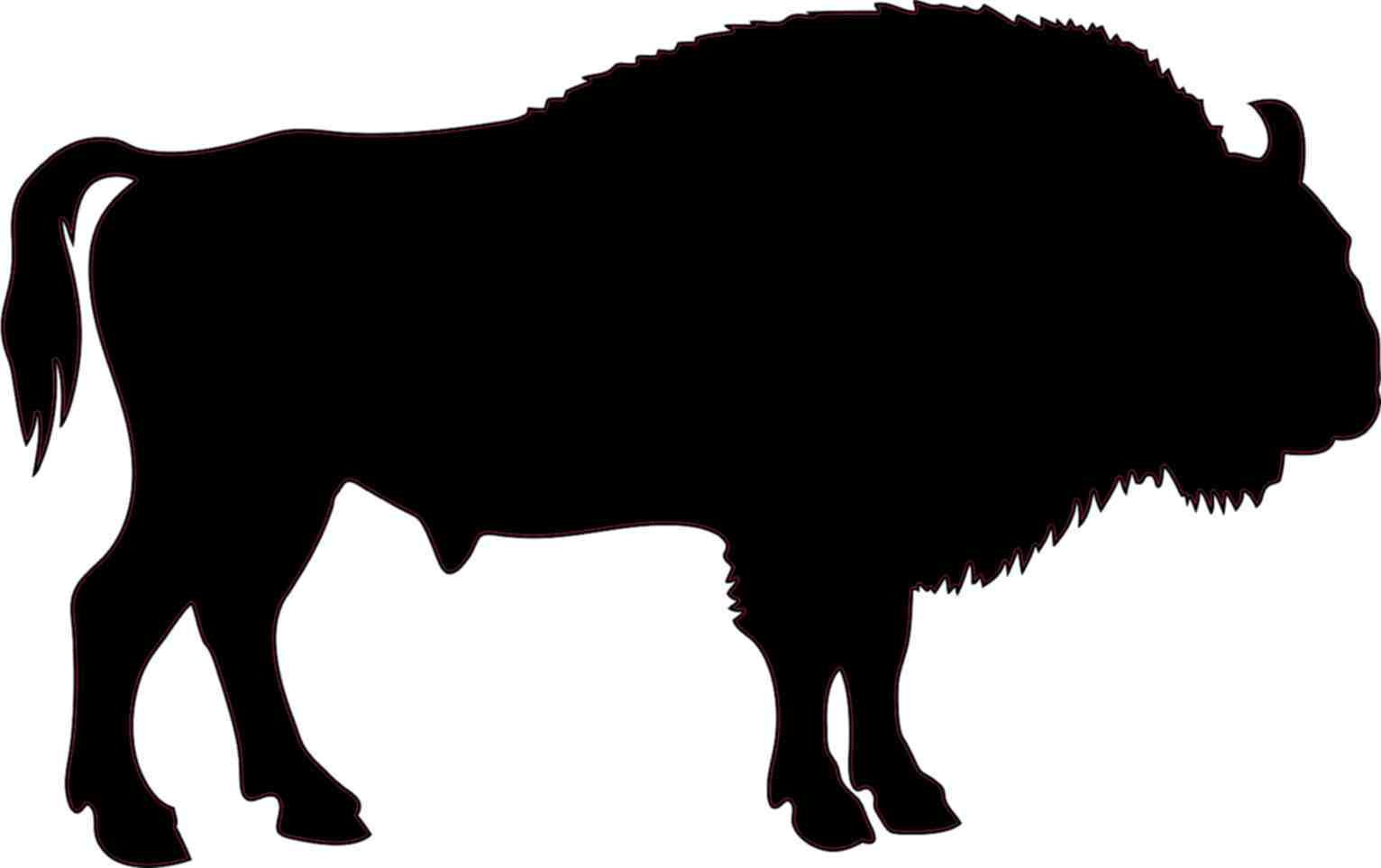 Buffalo Silhouette Images