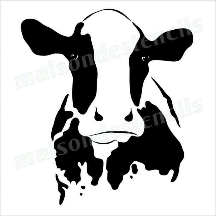 736x736 Drawn Cattle Stencil