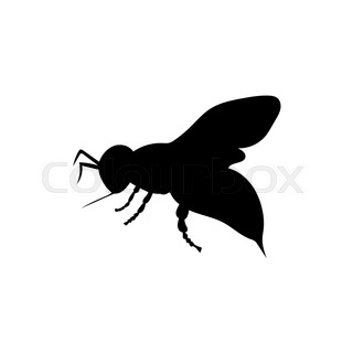 320x320 Set Of Bugs Silhouette