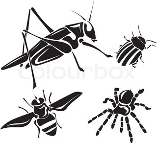 320x292 Various Insects Forming Silhouette Of Big Bug Stock Vector