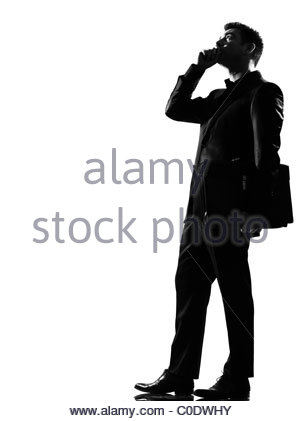 300x421 Bug Silhouette On White Background, Vector Illustration Stock