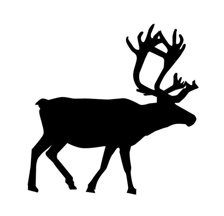 736x709 11 Best Renar Images On Reindeer Silhouette, Animal