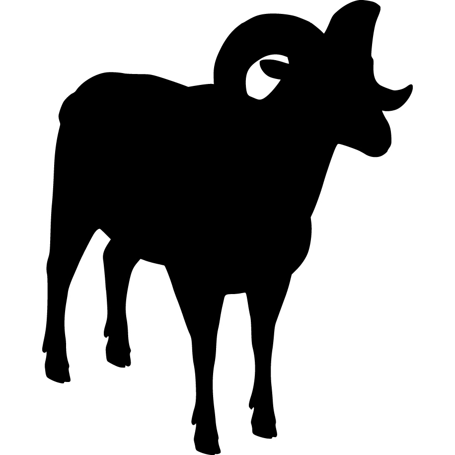 916x916 Dall Sheep Clipart Bull Elk