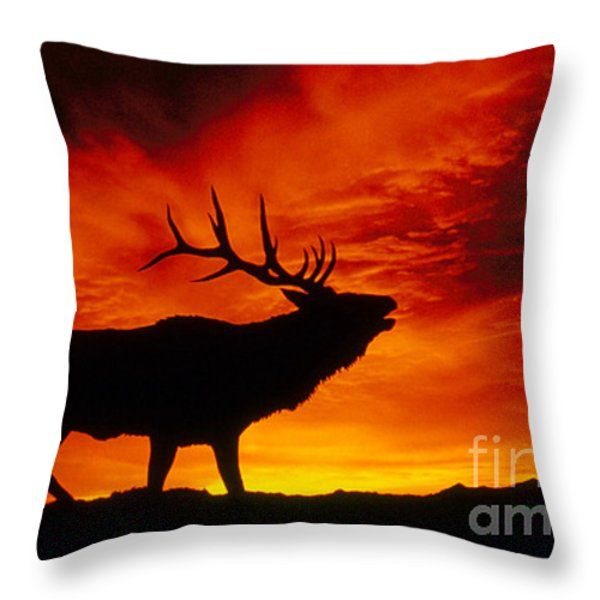 600x600 Elk Bugling At Sunset Throw Pillow By Kenneth W Fink Silhouettes