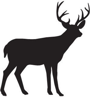 298x320 517 Best Fishing, Hunting, Cabin Decor,silhouettes, Vectors