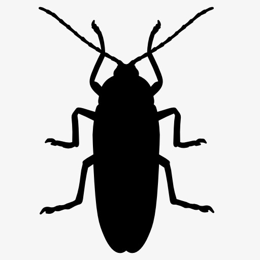 512x512 Cockroach Silhouette, Insect, Animal, Projection Png Image