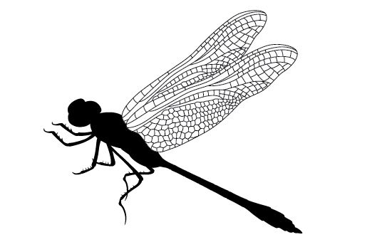 550x354 Dragonfly Silhouette Vector