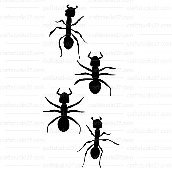 570x569 Ants Svg Ant Bugs Insects 4 Different Ants Silhouette Cameo Cricut