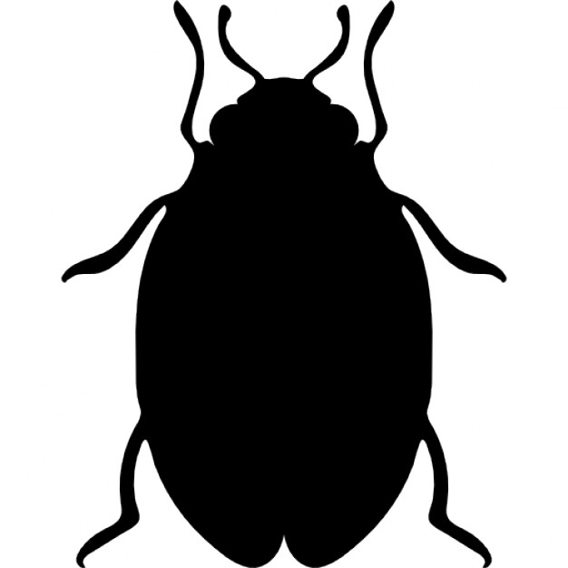 626x626 Insect Bed Bug Shape Icons Free Download