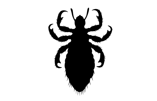 550x354 Insects Silhouette Cipart