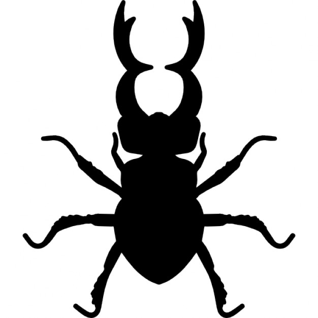 626x626 Stag Beetle Insect Animal Shape Icons Free Download