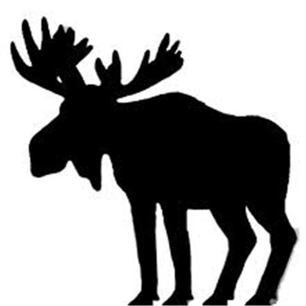 600x600 Bull Moose Radio Online Radio By Bull Moose Radio Network