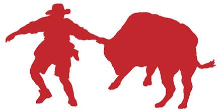 443x222 Bull Riding School