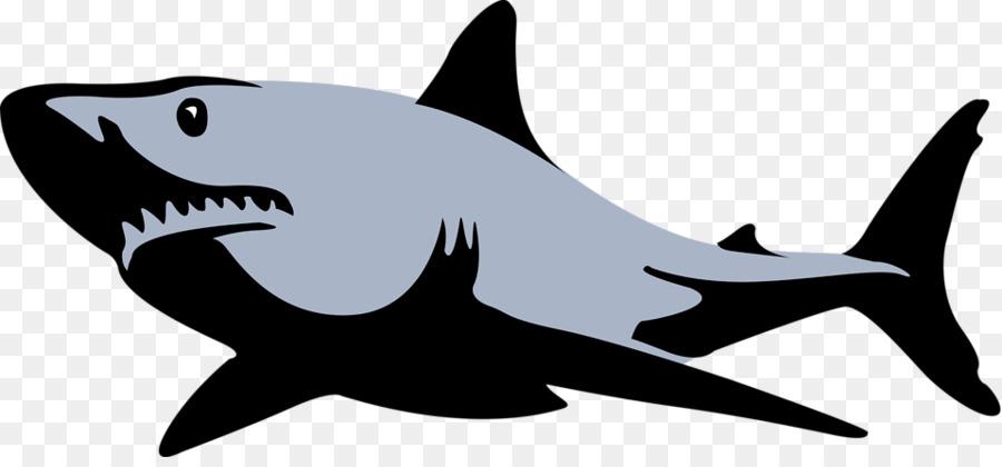 900x420 Great White Shark Bull Shark Tiger Shark Clip Art
