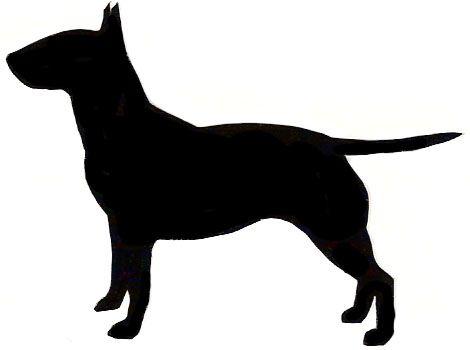 470x350 Bull Terrier.jpg Paper Cut Outs Amp Sketch Files