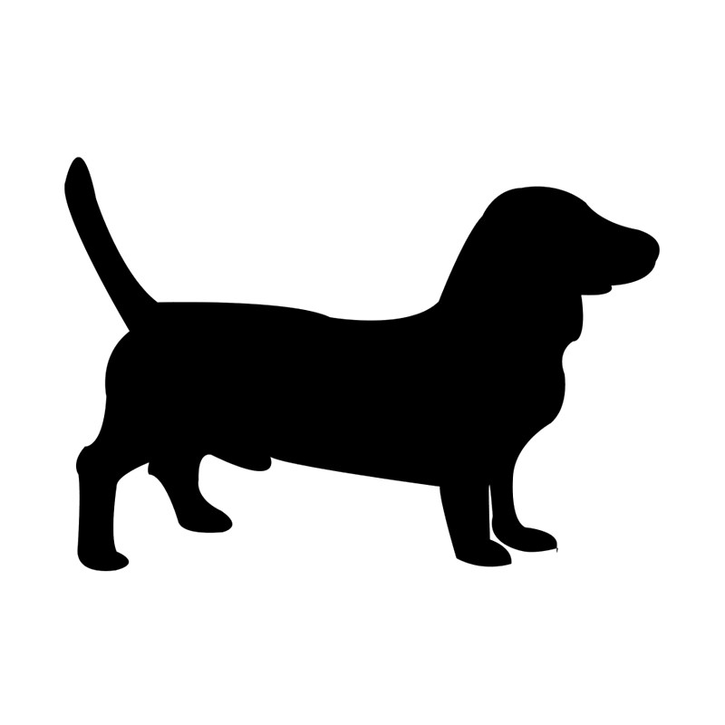 800x800 Bull Terrier Dog Silhouette Leggings By Mishamisha Redbubble