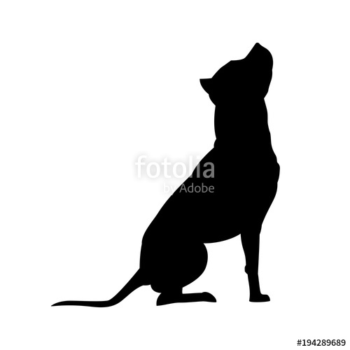 500x500 American Pit Bull Terrier Silhouette Isolated On White Background
