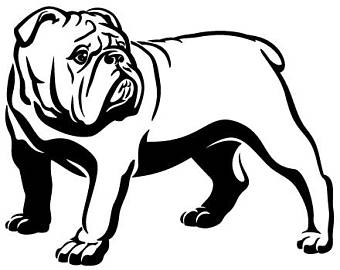 340x270 American Bulldog Art Etsy