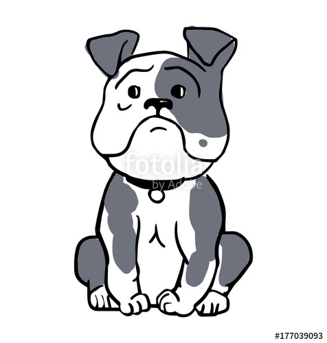 476x500 English Bulldog Isolated On White Background. Cute Gray Outline