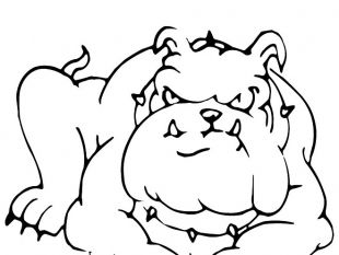 310x233 Bulldog Free Vector Image Free Vectors Ui Download