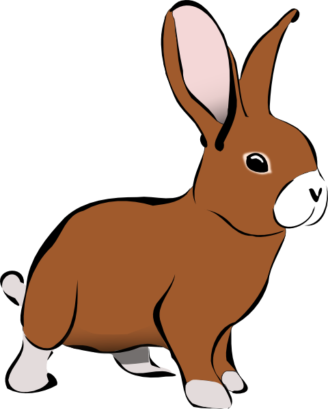 480x597 Awesome Clipart Rabbit