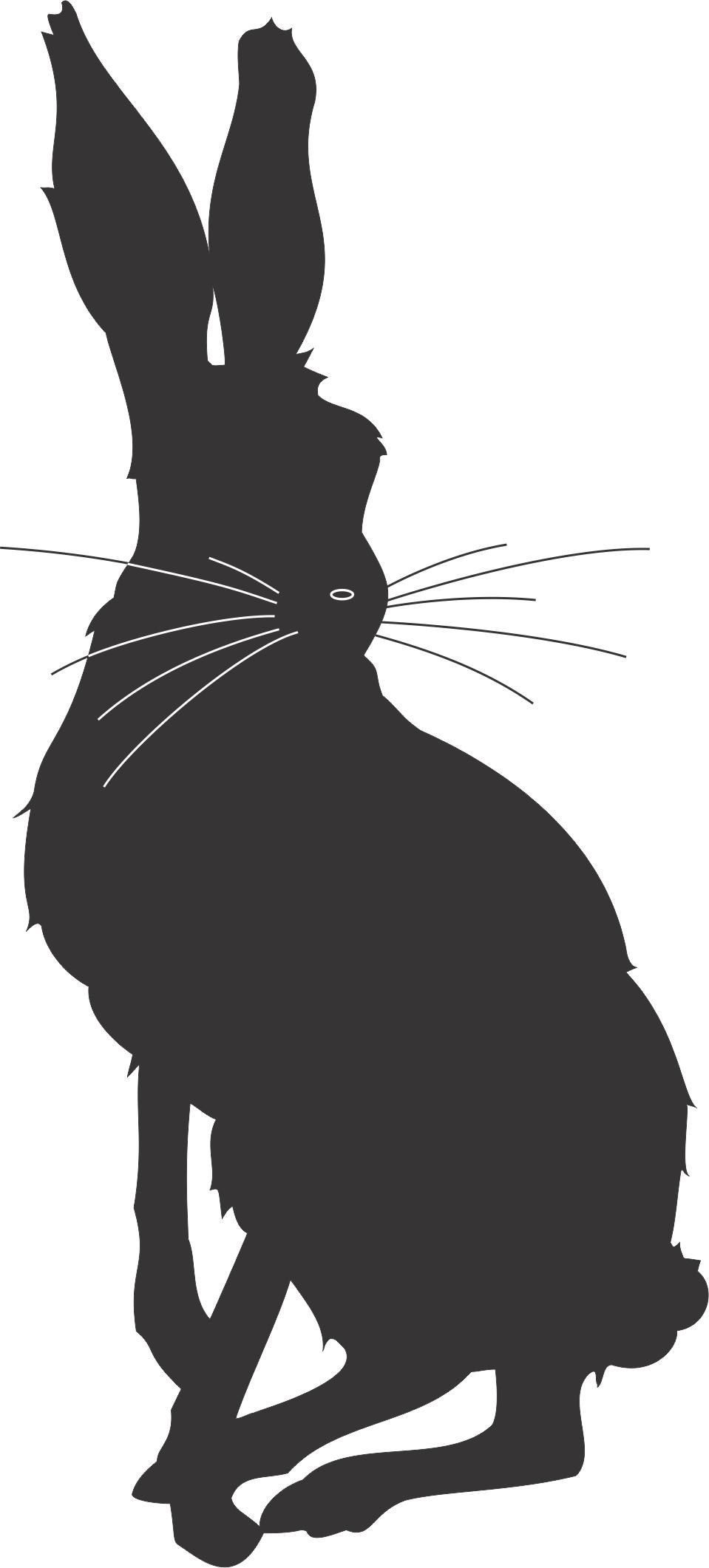 959x2122 Cartoon Rabbit Silhouette 02.jpg Pixels Letters, Etc