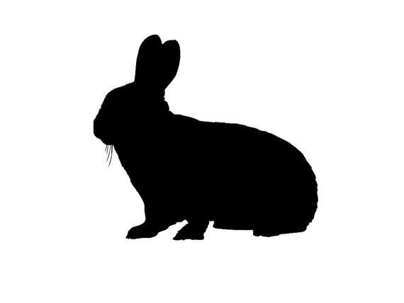 570x428 Bunny Rabbit Silhouette Custom Die Cut Vinyl Decal Sticker