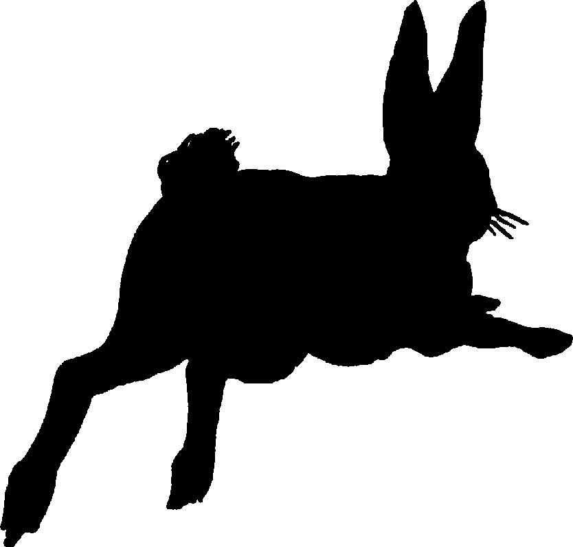 834x796 Jack Rabbit Clipart Rabbit Silhouette
