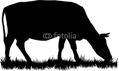 401x240 Silhouette Of Cow Eating Grass