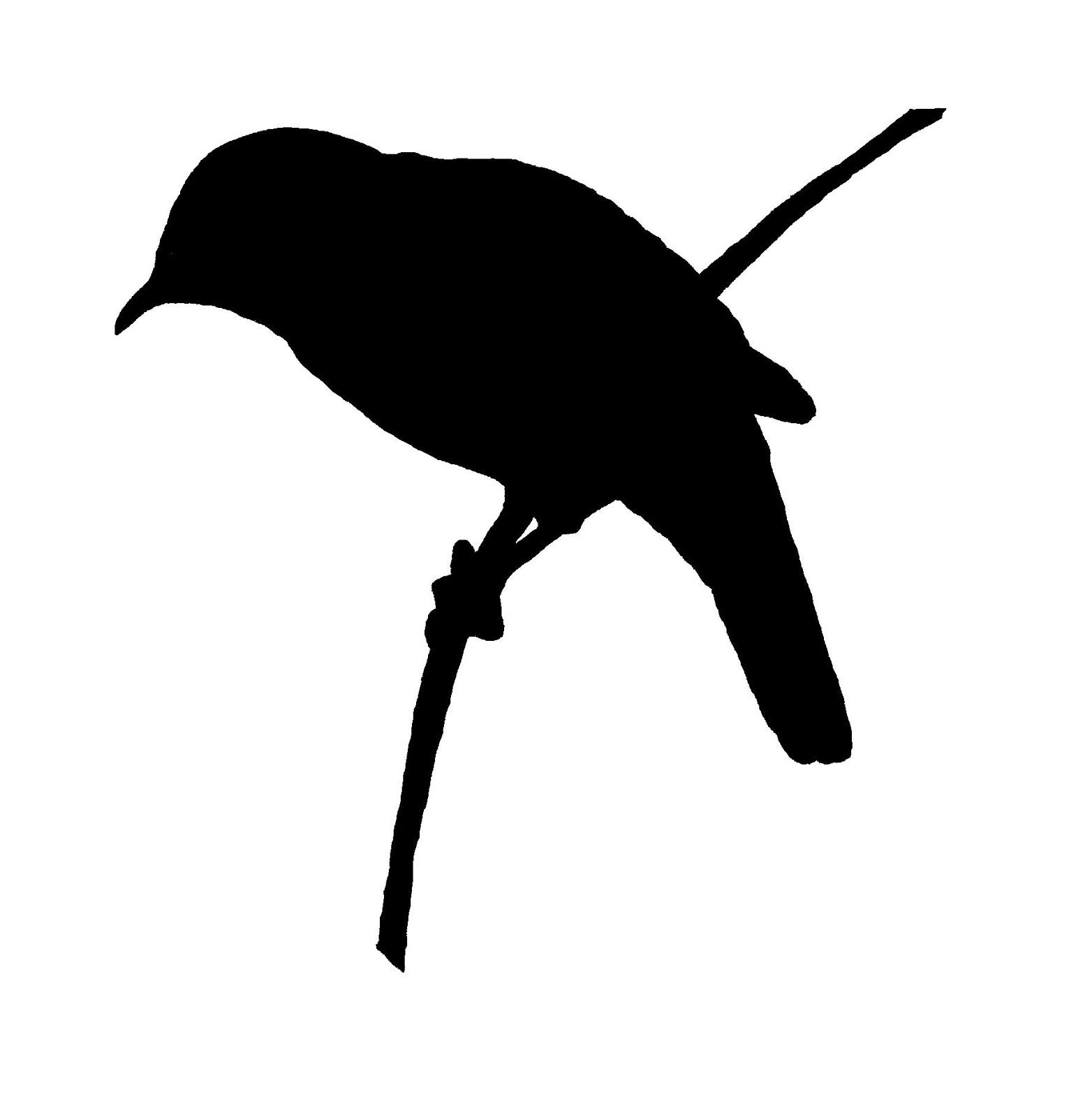 1564x1600 Digital Stamp Design Free Bird Image Transfer Silhouette